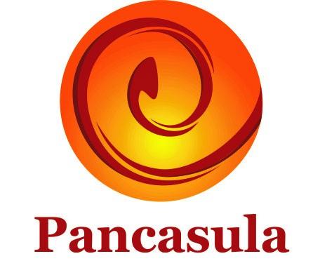 PT. PANCASULA INDONESIA